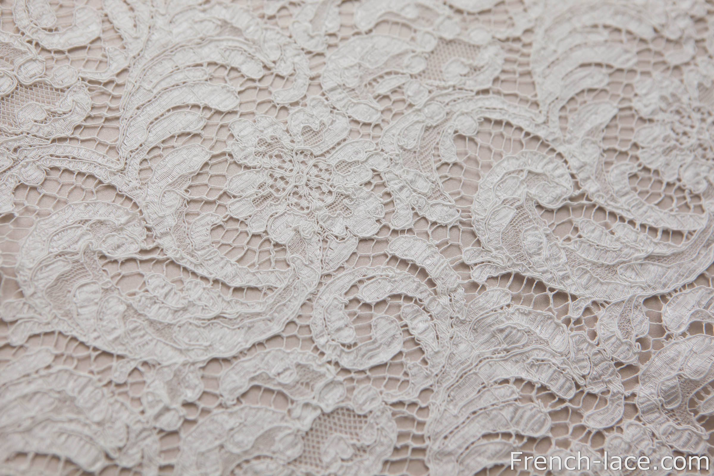 Zo 233 85 White French Lace Online Shop