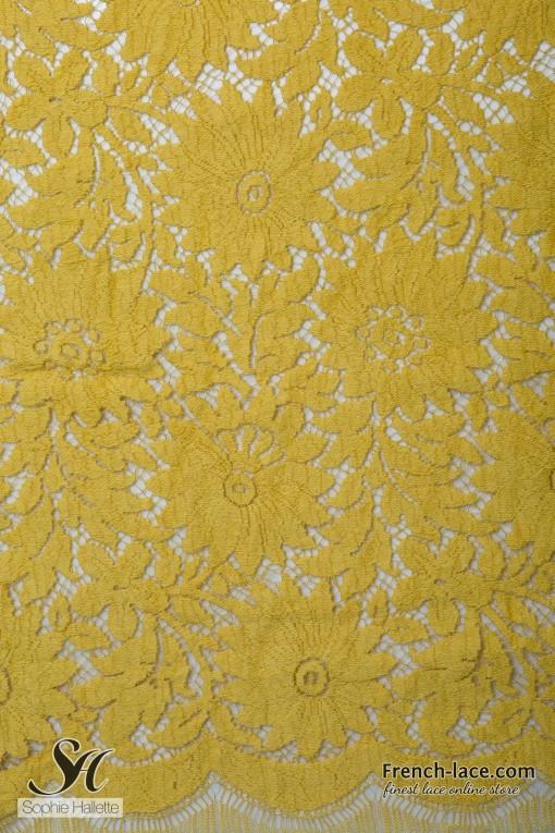 Katherine 90 mustard (1)