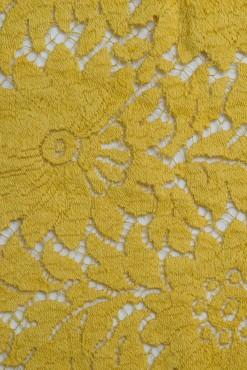 Katherine 90 mustard (2)