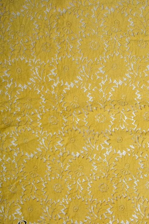 Katherine 90 mustard (3)