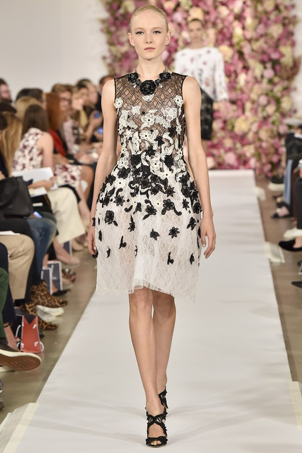 Contrast black and white french lace combinations with appliques.
