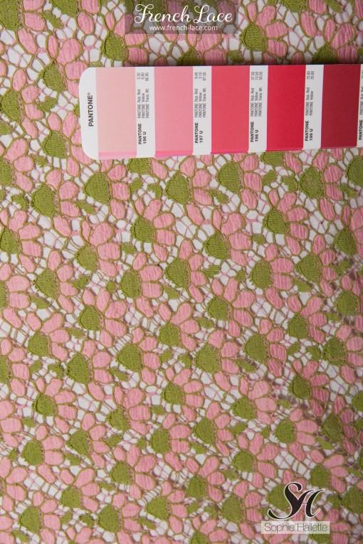 Margaritka 85 rosegreen (4)